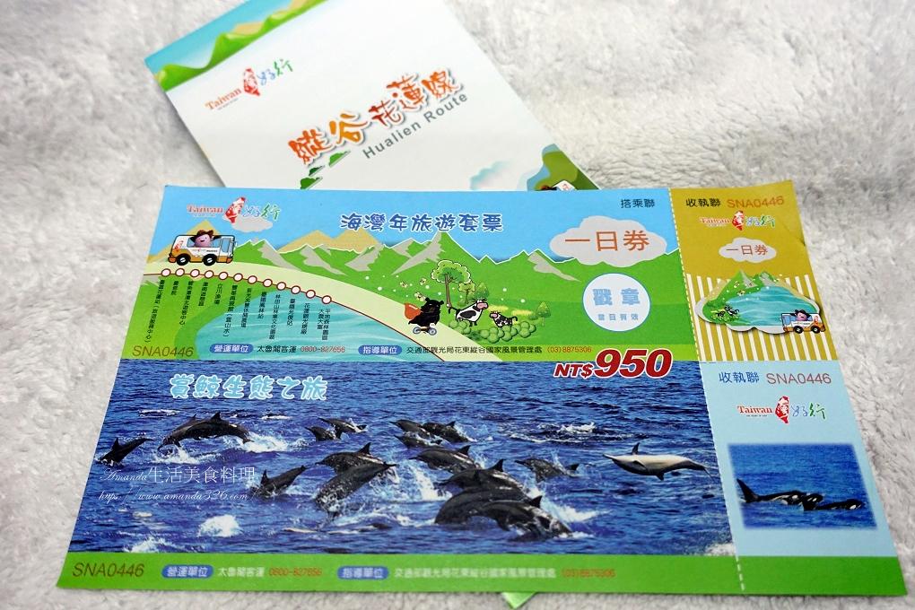 台灣好行,瓶鼻海豚,縱谷花蓮線,花蓮港,賞鯨,賞鯨豚