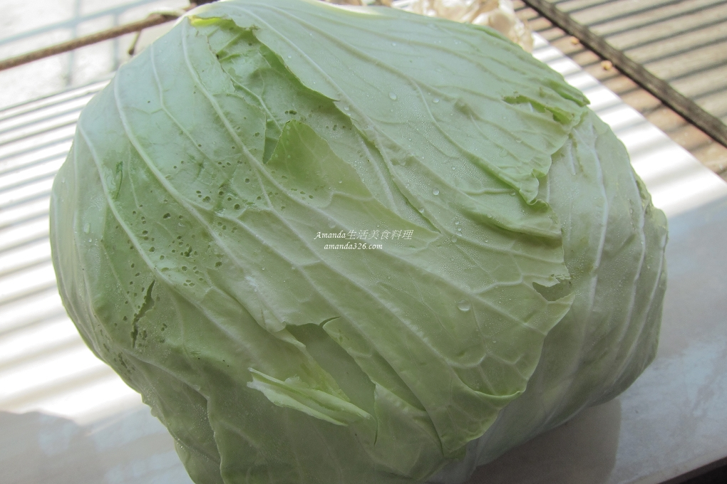 曬高麗菜,發酵高麗菜,素食,蔬食,酸高麗菜,醃漬高麗菜,高麗泡菜,高麗菜酸