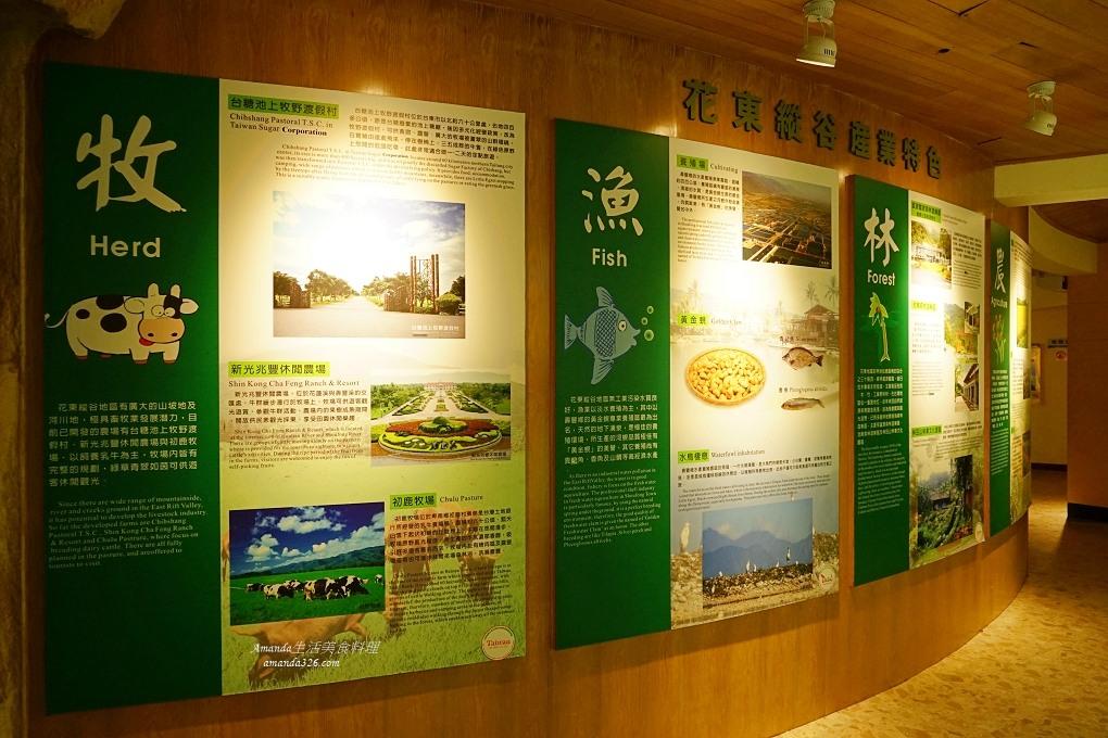 台灣好行,旅行,旅遊,腳踏車,花蓮,花蓮旅行,花蓮旅遊,花蓮鯉魚潭,花蓮鯉魚潭餐廳,鯉魚潭