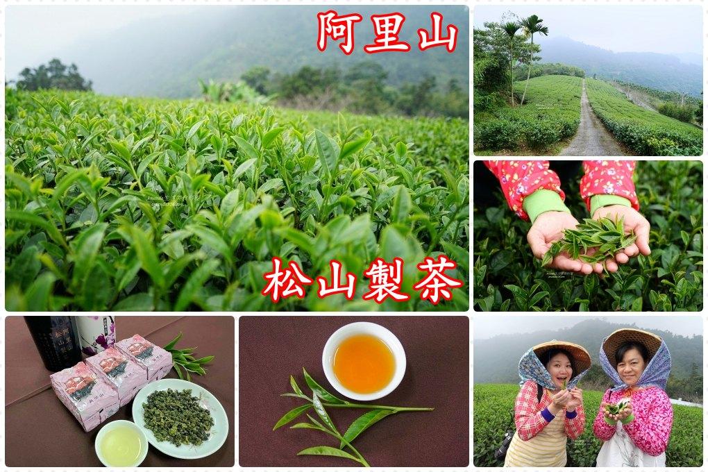 阿里山-松山製茶、山坡上的綠色茶園、著採茶裝採茶
