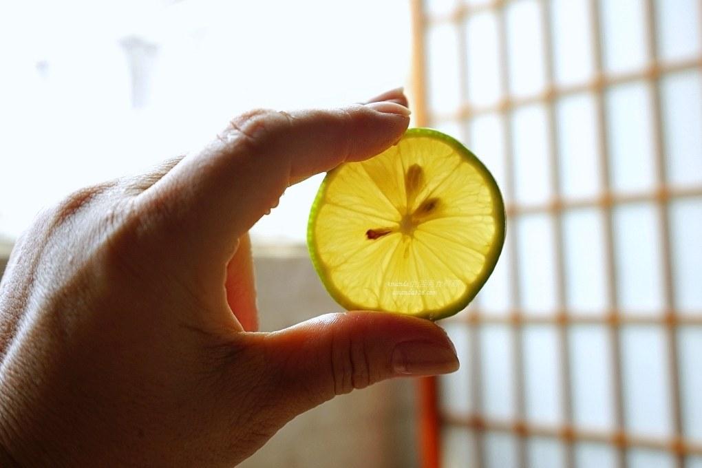 佳興檸檬汁,佳興檸檬汁做法,佳興檸檬汁怎麼做,明新檸檬汁,明新檸檬汁做法,明新檸檬汁怎麼做,檸檬汁,檸檬汁做法,檸檬汁製作,自製檸檬汁,花蓮檸檬汁