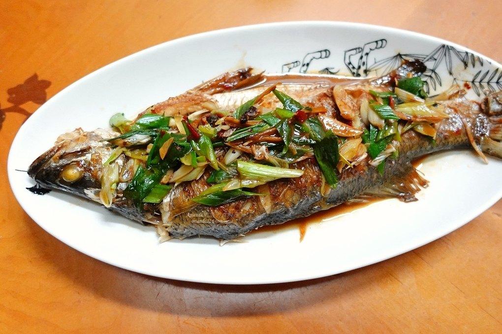 紅燒金目鱸魚