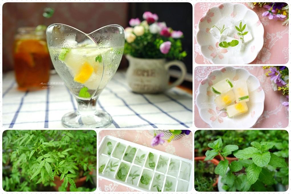 檸檬水果冰塊 香草冰塊