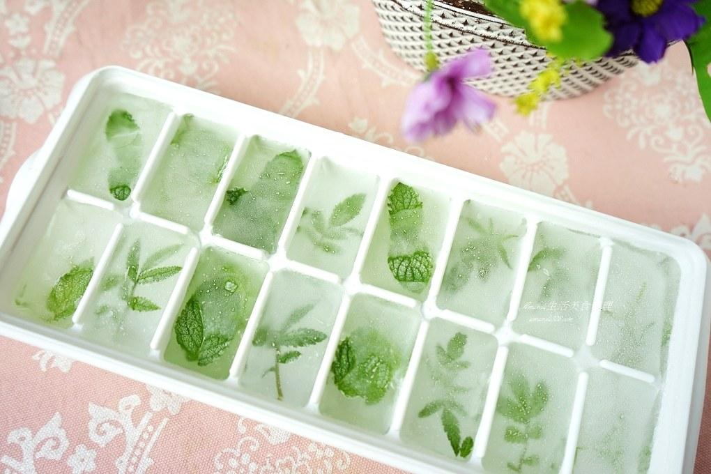 冰塊,檸檬冰塊,氣泡水,水果冰塊,水果水,汽泡水,自製衛生冰塊,萬壽菊冰塊,薄荷冰塊,香草冰塊,香草水